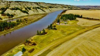 Photo 4:  in Rural Stettler No. 6, County of: Rural Stettler County Agriculture for sale : MLS®# C4295199