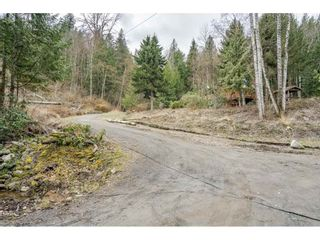 Photo 31: 6067 ROSS Road: Ryder Lake House for sale (Sardis)  : MLS®# R2562199