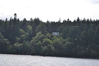 Photo 7: 226 HAIRY ELBOW Road in Sechelt: Sechelt District House for sale (Sunshine Coast)  : MLS®# R2137692