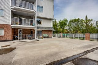 Photo 24: . 2109 Hawksbrow Point NW in Calgary: Hawkwood Apartment for sale : MLS®# A1116776