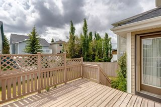 Photo 47: 131 Citadel Crest Green NW in Calgary: Citadel Detached for sale : MLS®# A1124177