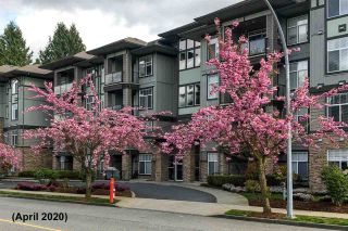 """Photo 34: 408 33338 MAYFAIR Avenue in Abbotsford: Central Abbotsford Condo for sale in """"The Sterling"""" : MLS®# R2456135"""