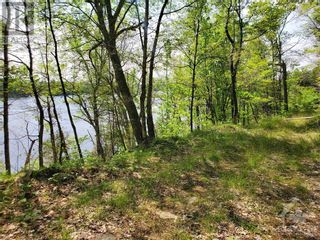 Photo 15: 2600 CLYDE LAKE ROAD in Lanark: Vacant Land for sale : MLS®# 1253879