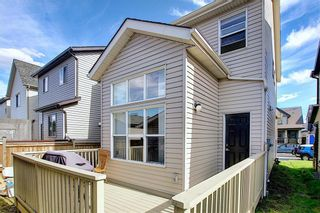 Photo 36: 168 SKYVIEW SPRINGS Gardens NE in Calgary: Skyview Ranch Detached for sale : MLS®# A1093077