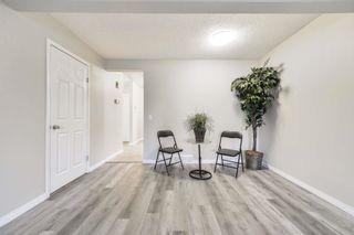 Photo 7: 36 18010 98 Avenue in Edmonton: Zone 20 Townhouse for sale : MLS®# E4255398