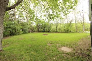 Photo 4: 72 Driftwood Shores Road in Kawartha Lakes: Rural Eldon House (Bungalow) for sale : MLS®# X3506805