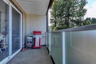 Photo 21: 310 3252 Glasgow Ave in : SE Quadra Condo for sale (Saanich East)  : MLS®# 865792