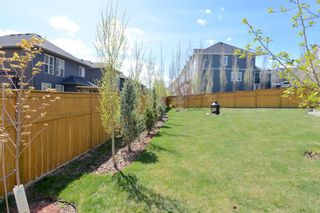 Photo 46: 130 Nolanshire Crescent NW in Calgary: Nolan Hill Detached for sale : MLS®# A1104088
