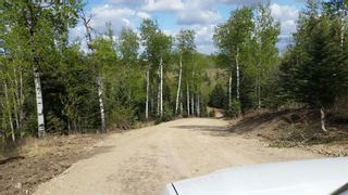 Photo 33: ON Highway 27: Rural Mountain View County Land for sale : MLS®# A1012349