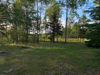 Photo 5: Lot 31 Highway 14 in Nine Mile River: 105-East Hants/Colchester West Vacant Land for sale (Halifax-Dartmouth)  : MLS®# 202118383