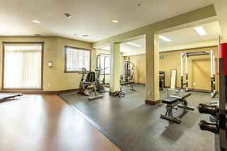Photo 29: 225 2503 HANNA Crescent in Edmonton: Zone 14 Condo for sale : MLS®# E4245395