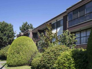 """Photo 1: 113 3787 W 4TH Avenue in Vancouver: Point Grey Condo for sale in """"Andrea Apartments"""" (Vancouver West)  : MLS®# R2085313"""