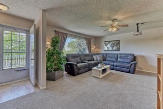 Photo 12: 3454 Twp Rd 290 A Township: Rural Mountain View County Detached for sale : MLS®# A1113773