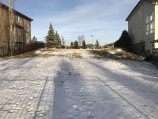 Photo 3: 1089 TORY Road in Edmonton: Zone 14 Vacant Lot for sale : MLS®# E4229905