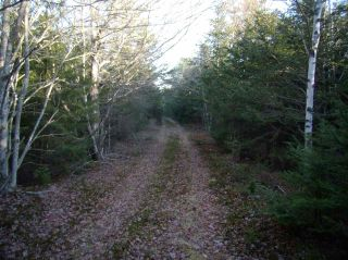 Photo 8: Hwy 3 Tusket Highway in Tusket: County Tusket- Hwy 308 Vacant Land for sale (Yarmouth)  : MLS®# 201726173