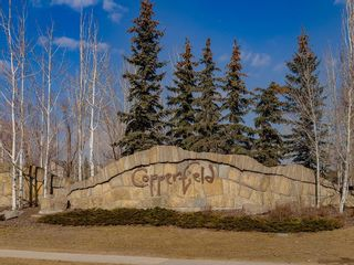 Photo 27: 133 COPPERFIELD Lane SE in Calgary: Copperfield Row/Townhouse for sale : MLS®# C4236105
