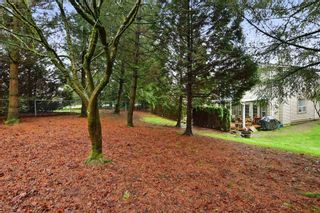"Photo 20: 74 20881 87 Avenue in Langley: Walnut Grove Townhouse for sale in ""Kew Gardens"" : MLS®# R2238202"