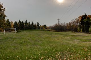 Photo 8: 1 51248 RGE RD 231: Rural Strathcona County House for sale : MLS®# E4265720