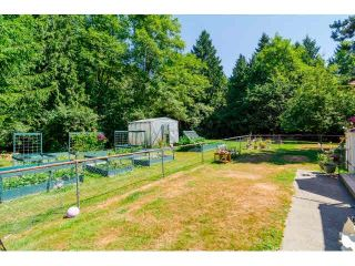 """Photo 9: 14567 64TH Avenue in Surrey: East Newton House for sale in """"SULLIVAN HEIGHTS"""" : MLS®# F1446471"""