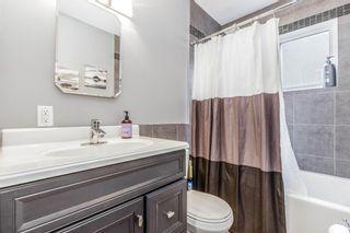 Photo 12: 260 Van Horne Crescent NE in Calgary: Vista Heights Detached for sale : MLS®# A1144476