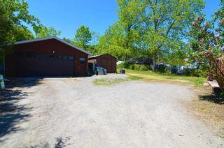 Photo 8: 122 Indian Road in Asphodel-Norwood: Rural Asphodel-Norwood House (Bungalow) for sale : MLS®# X5254279