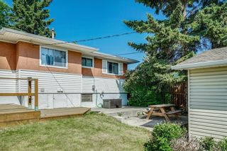 Photo 29: 5920 BUCKTHORN Road NW in Calgary: Thorncliffe Detached for sale : MLS®# C4172366