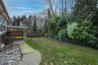 Photo 33: 8699 TULSEY Crescent in Surrey: Queen Mary Park Surrey House for sale : MLS®# R2538849