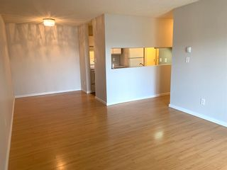 Photo 5: 206 5065 31 Avenue in Edmonton: Zone 29 Condo for sale : MLS®# E4246913