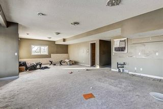 Photo 38: 36 ROYAL HIGHLAND Court NW in Calgary: Royal Oak Detached for sale : MLS®# A1029258