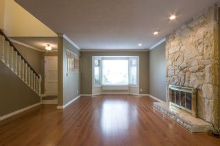 Photo 5: 10780 Canso Crescent in Richmond: Steveston North House for rent