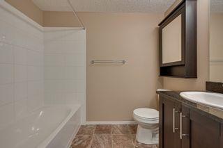 Photo 25: 113 111 Watt Common in Edmonton: Zone 53 Condo for sale : MLS®# E4246777