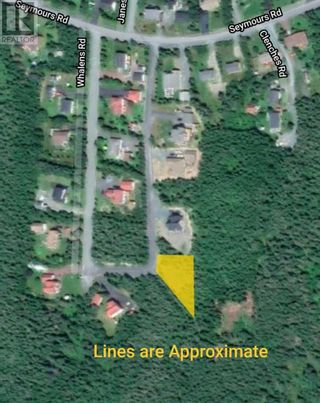 Photo 7: 18-24 Butts Road in Spaniard's Bay: Vacant Land for sale : MLS®# 1234275