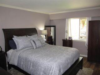 Photo 13: 11981 248 Street in Maple Ridge: Cottonwood MR House for sale : MLS®# R2165177