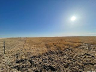 Photo 34: Phillips Acreage in Francis: Residential for sale (Francis Rm No. 127)  : MLS®# SK846217