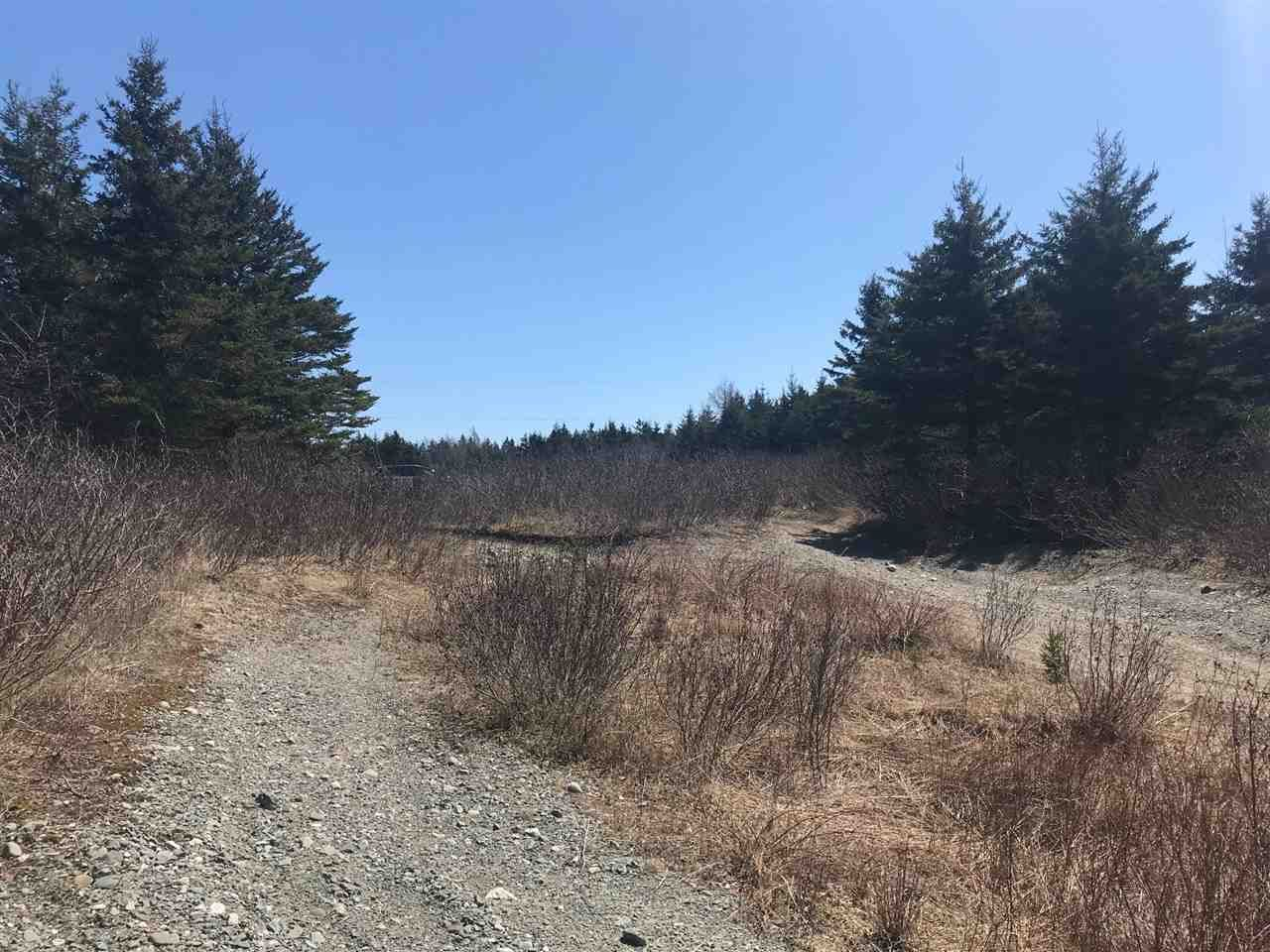 Photo 11: Photos: 11574 Highway 7 in Lake Charlotte: 35-Halifax County East Vacant Land for sale (Halifax-Dartmouth)  : MLS®# 201927372