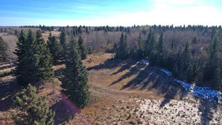 Photo 16: 20.02 Acres +/- NW of Cochrane in Rural Rocky View County: Rural Rocky View MD Land for sale : MLS®# A1065950