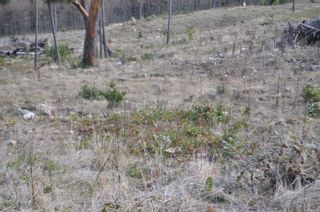 Photo 5: Lot 18 Trustees Trail in : GI Salt Spring Land for sale (Gulf Islands)  : MLS®# 869902