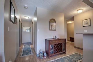Photo 11: 311 8604 48 Avenue NW in Calgary: Bowness Apartment for sale : MLS®# A1113873