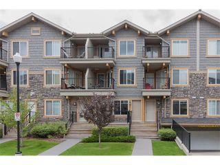 Main Photo: 231 MCKENZIE TOWNE LN SE in Calgary: McKenzie Towne House for sale : MLS®# C4077171