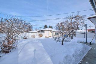 Photo 22: 6912 86 Avenue in Edmonton: Zone 18 House for sale : MLS®# E4228530