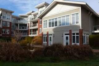 Photo 16: 413 4211 BAYVIEW STREET: Steveston South Home for sale ()  : MLS®# R2230647