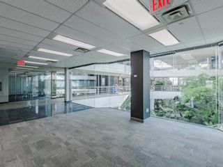 Photo 19: 1550 Enterprise Road in Mississauga: Northeast Property for sale : MLS®# W5161295