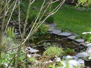 Photo 56: 4809 Dundas Rd in COURTENAY: CV Courtenay City House for sale (Comox Valley)  : MLS®# 684462