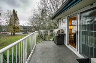 "Photo 33: 303 20556 113 Avenue in Maple Ridge: Southwest Maple Ridge Condo for sale in ""MAPLES"" : MLS®# R2519734"