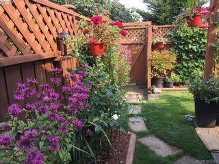 Photo 26: 6669 Acreman Pl in SOOKE: Sk Broomhill House for sale (Sooke)  : MLS®# 800986