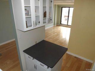 Photo 16: 15 Kennedy Street in WINNIPEG: Central Winnipeg Condominium for sale : MLS®# 1402317