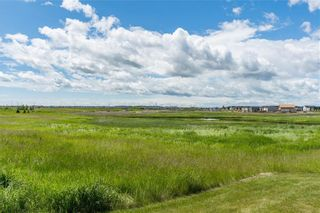 Photo 31: 96 COPPERSTONE Drive SE in Calgary: Copperfield Detached for sale : MLS®# C4303623