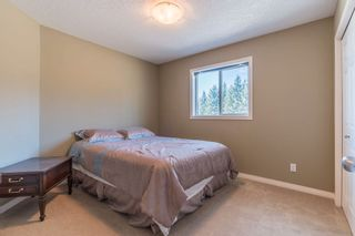 Photo 22: 49080 RGE RD 273: Rural Leduc County House for sale : MLS®# E4238842