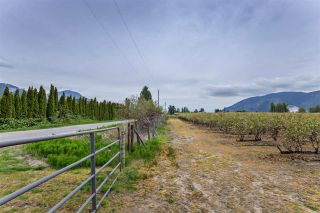 Photo 35: 36509 LOUGHEED Highway in Mission: Dewdney Deroche House for sale : MLS®# R2572923
