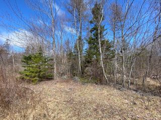 Photo 5: Lot 3 Porters Lake Station Road in Porters Lake: 31-Lawrencetown, Lake Echo, Porters Lake Vacant Land for sale (Halifax-Dartmouth)  : MLS®# 202107260